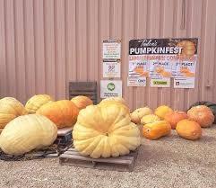 pumpkins - credit teulonpumpkinfest.com
